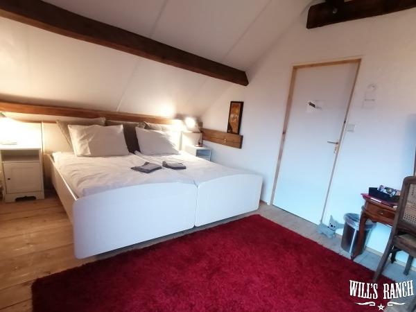 Longhorn-room